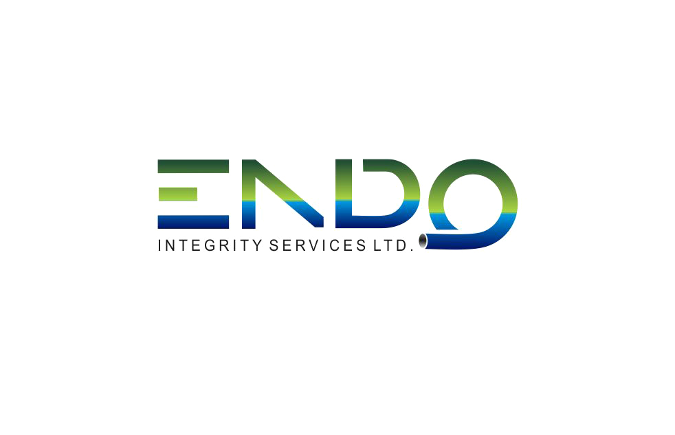 Logo Design by Muhammad Aslam - Entry No. 29 in the Logo Design Contest New Logo Design for ENDO Integrity Services Ltd..