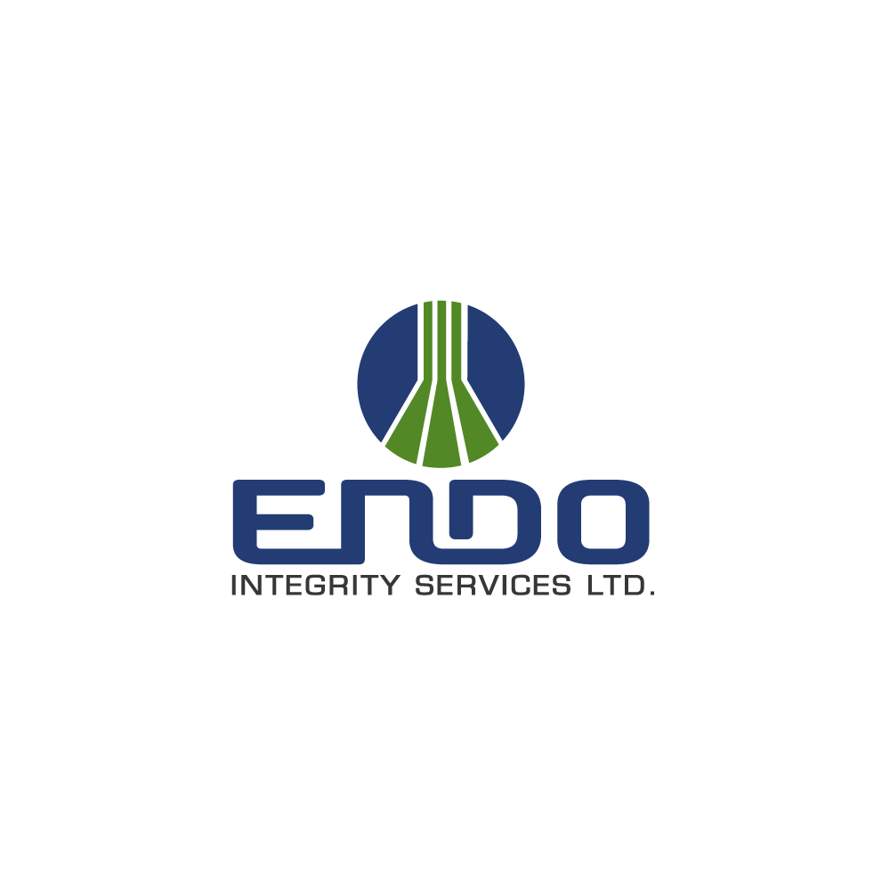 Logo Design by rockin - Entry No. 41 in the Logo Design Contest New Logo Design for ENDO Integrity Services Ltd..