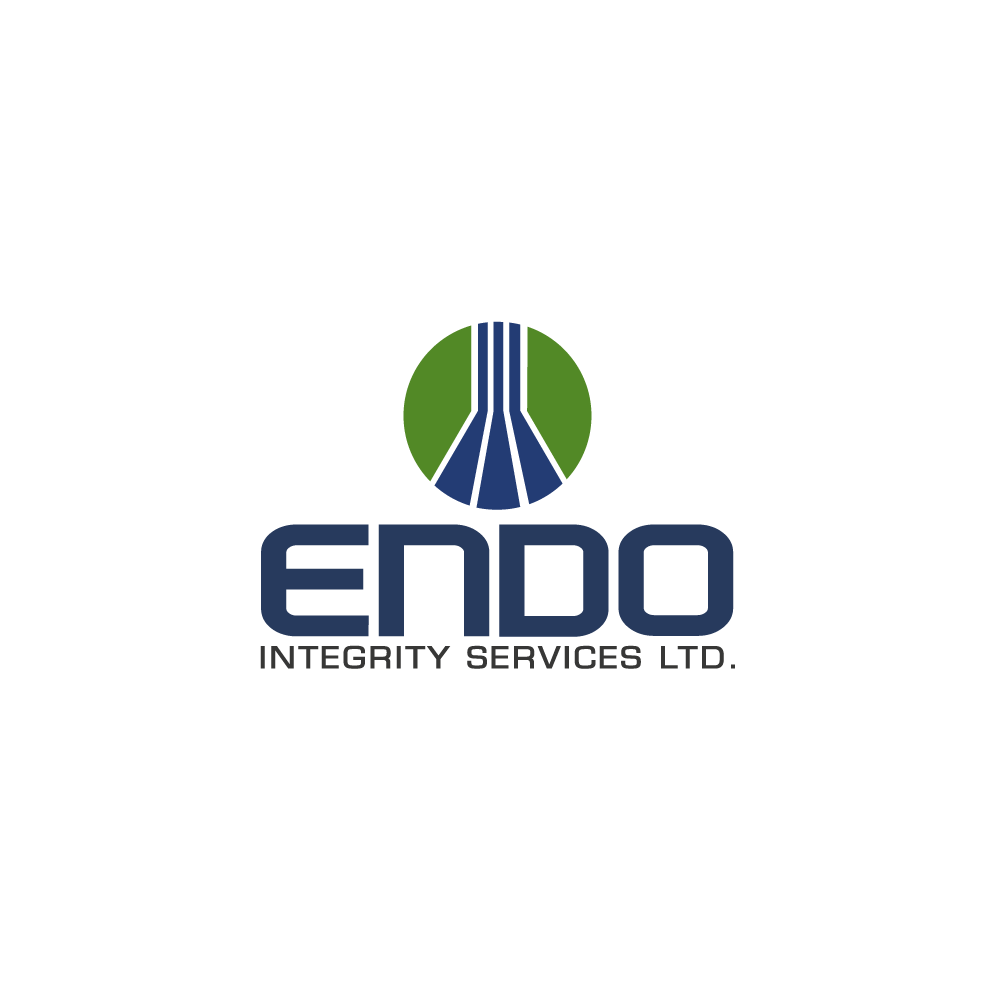 Logo Design by rockin - Entry No. 42 in the Logo Design Contest New Logo Design for ENDO Integrity Services Ltd..