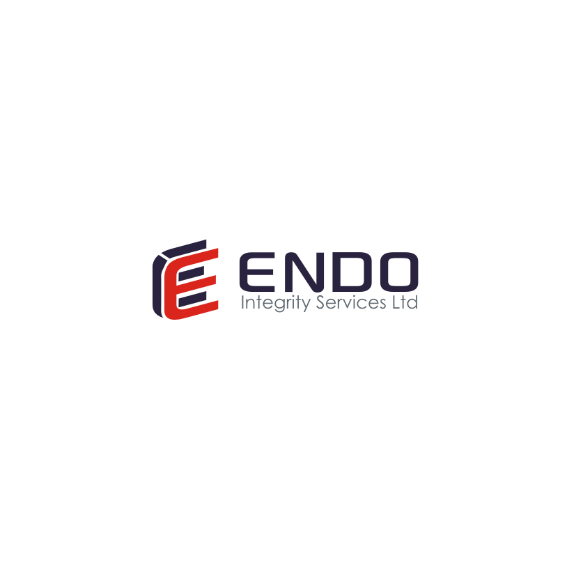 Logo Design by Think - Entry No. 44 in the Logo Design Contest New Logo Design for ENDO Integrity Services Ltd..
