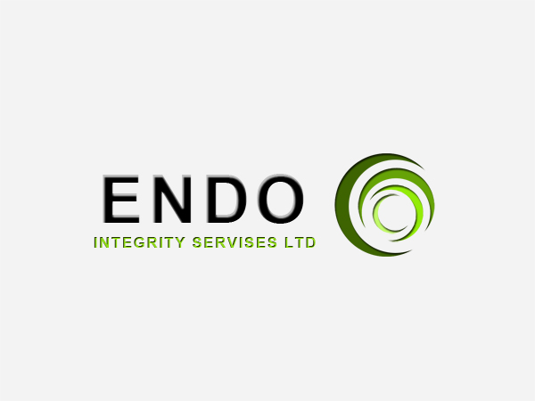 Logo Design by Mythos Designs - Entry No. 54 in the Logo Design Contest New Logo Design for ENDO Integrity Services Ltd..