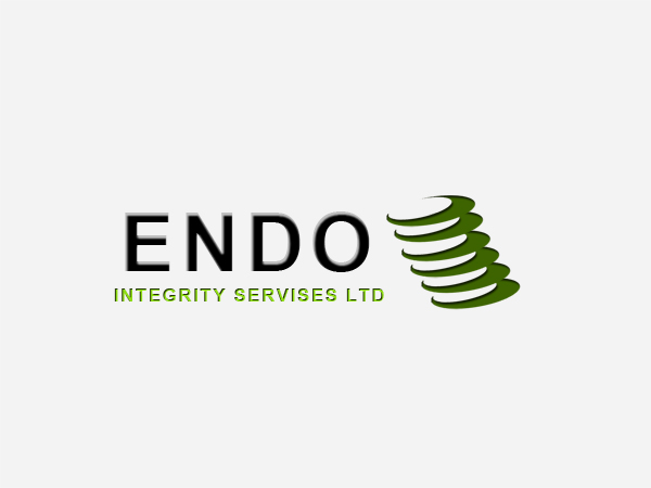 Logo Design by Mythos Designs - Entry No. 55 in the Logo Design Contest New Logo Design for ENDO Integrity Services Ltd..