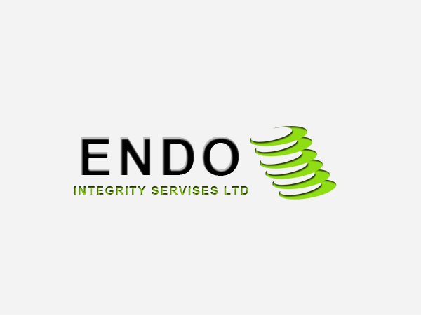 Logo Design by Mythos Designs - Entry No. 56 in the Logo Design Contest New Logo Design for ENDO Integrity Services Ltd..