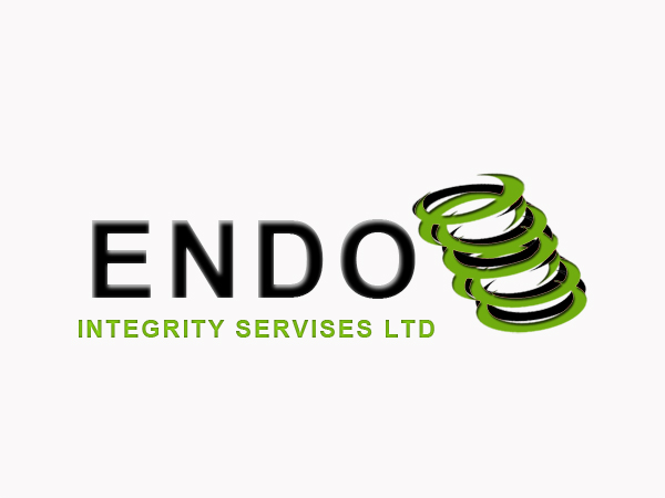 Logo Design by Mythos Designs - Entry No. 57 in the Logo Design Contest New Logo Design for ENDO Integrity Services Ltd..
