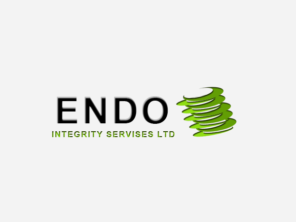 Logo Design by Mythos Designs - Entry No. 58 in the Logo Design Contest New Logo Design for ENDO Integrity Services Ltd..