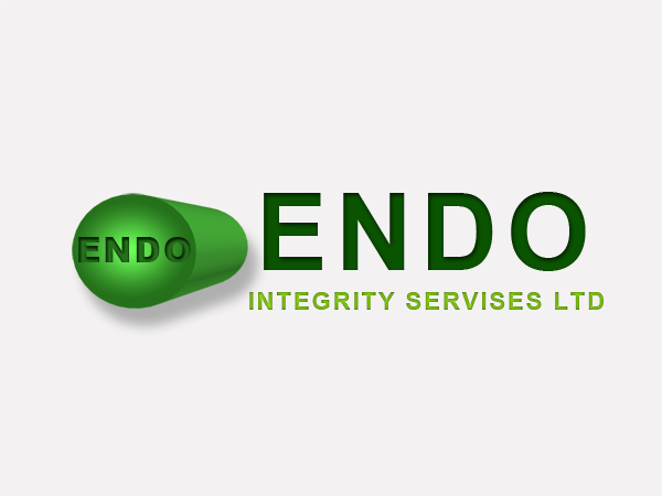 Logo Design by Mythos Designs - Entry No. 61 in the Logo Design Contest New Logo Design for ENDO Integrity Services Ltd..