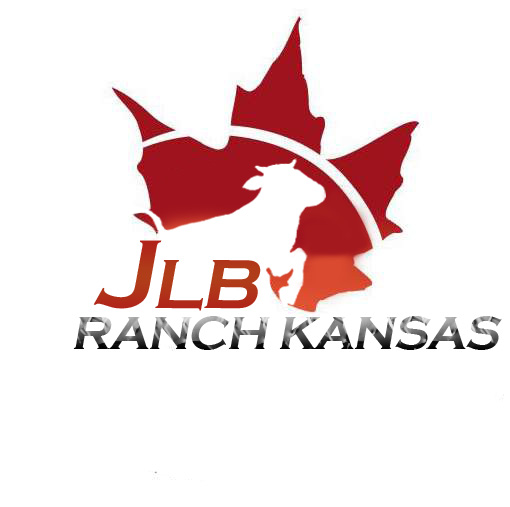 Logo Design by Private User - Entry No. 122 in the Logo Design Contest Logo Design Needed for Exciting New Company JLB Ranch Kansas.