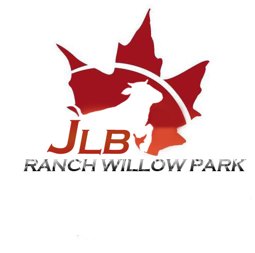 Logo Design by Private User - Entry No. 123 in the Logo Design Contest Logo Design Needed for Exciting New Company JLB Ranch Kansas.