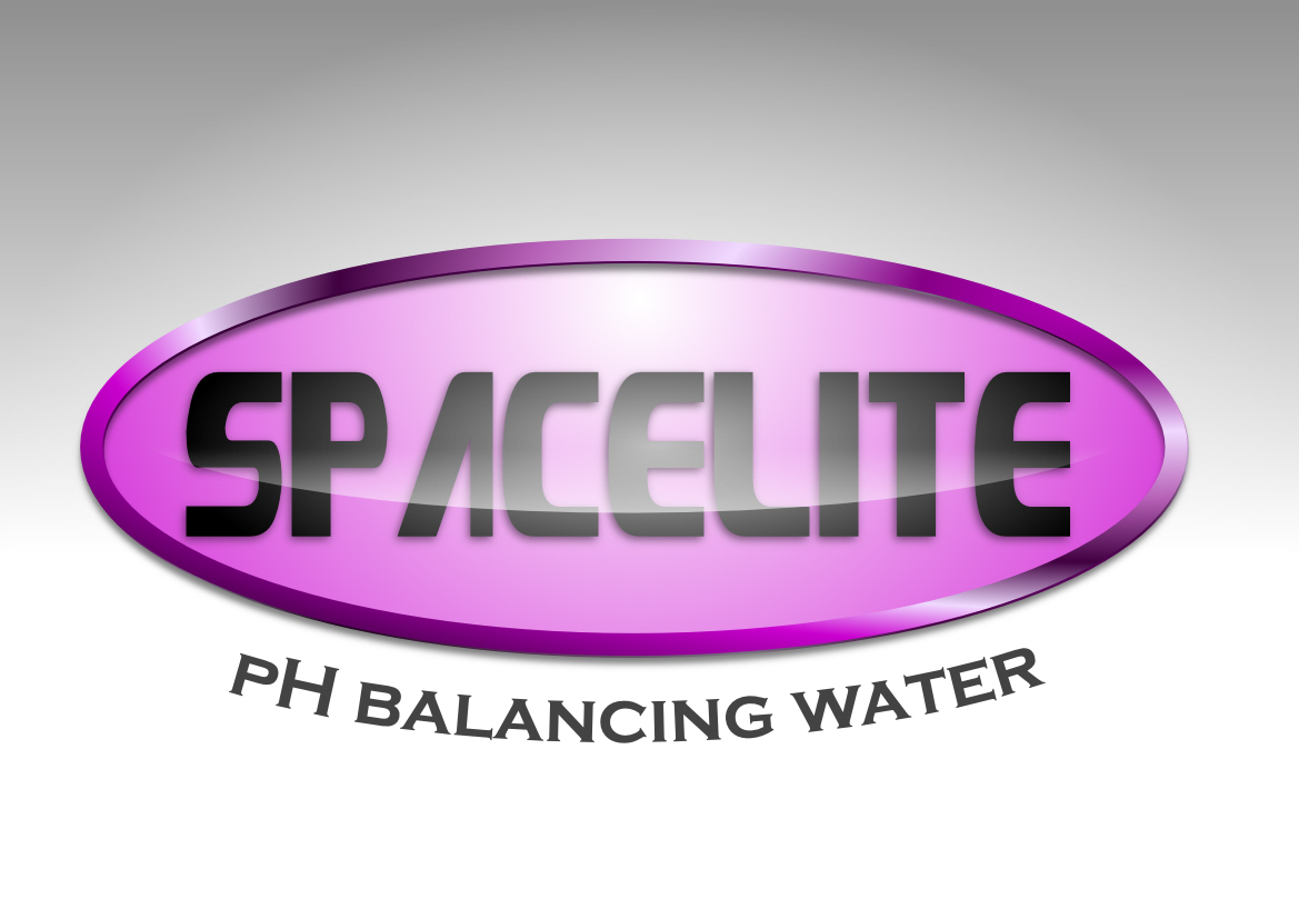 Logo Design by Heri Susanto - Entry No. 25 in the Logo Design Contest Fun Logo Design for Spacelyte.