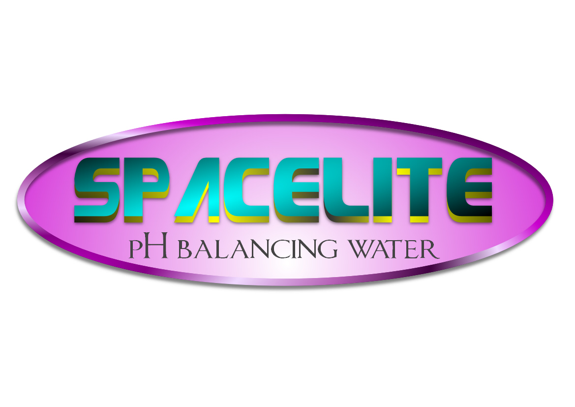 Logo Design by Heri Susanto - Entry No. 26 in the Logo Design Contest Fun Logo Design for Spacelyte.