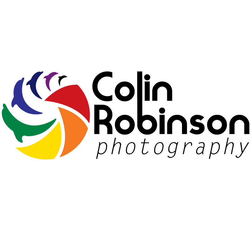 Logo Design by Nocturnal - Entry No. 4 in the Logo Design Contest Colin Robinson Photography.