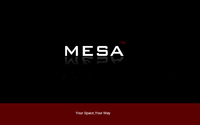 Logo Design by DOUMA AMINE - Entry No. 48 in the Logo Design Contest Logo Design for Mesa.