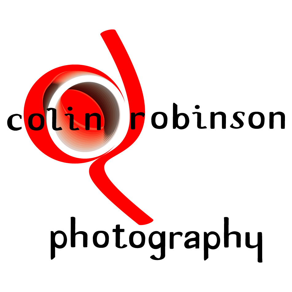 Logo Design by Renee Winfield - Entry No. 174 in the Logo Design Contest Colin Robinson Photography.