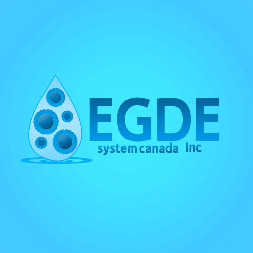 Logo Design by Bobby Yoga P - Entry No. 44 in the Logo Design Contest New Logo Design for Edge Systems Canada Inc.