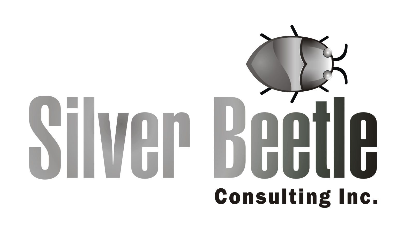 Logo Design by Private User - Entry No. 16 in the Logo Design Contest Silver Beetle Consulting Inc. Logo Design.