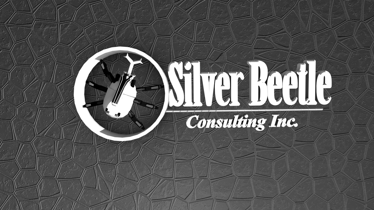 Logo Design by Francis Yap - Entry No. 18 in the Logo Design Contest Silver Beetle Consulting Inc. Logo Design.