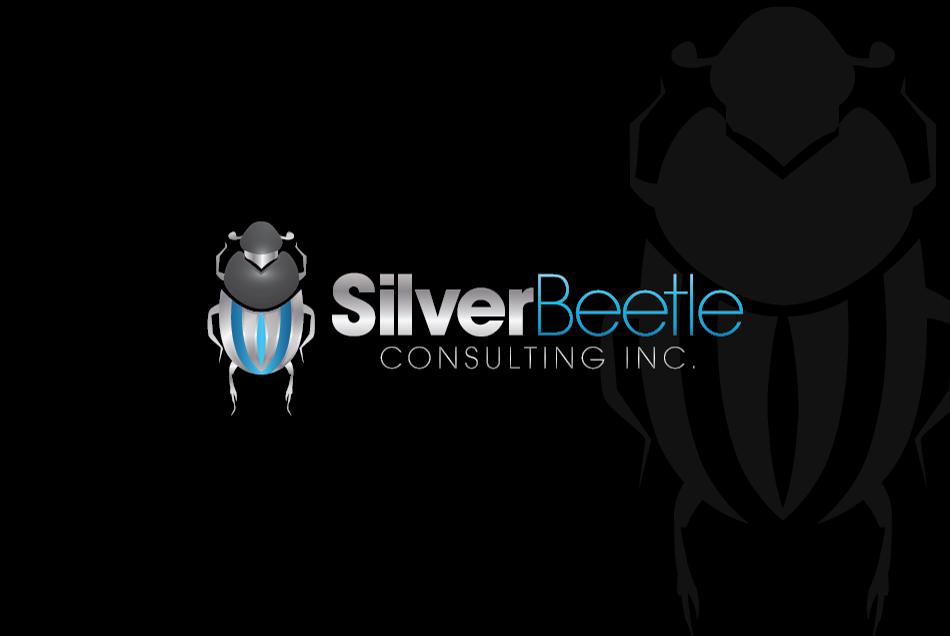 Logo Design by Dipin Bishwakarma - Entry No. 113 in the Logo Design Contest Silver Beetle Consulting Inc. Logo Design.
