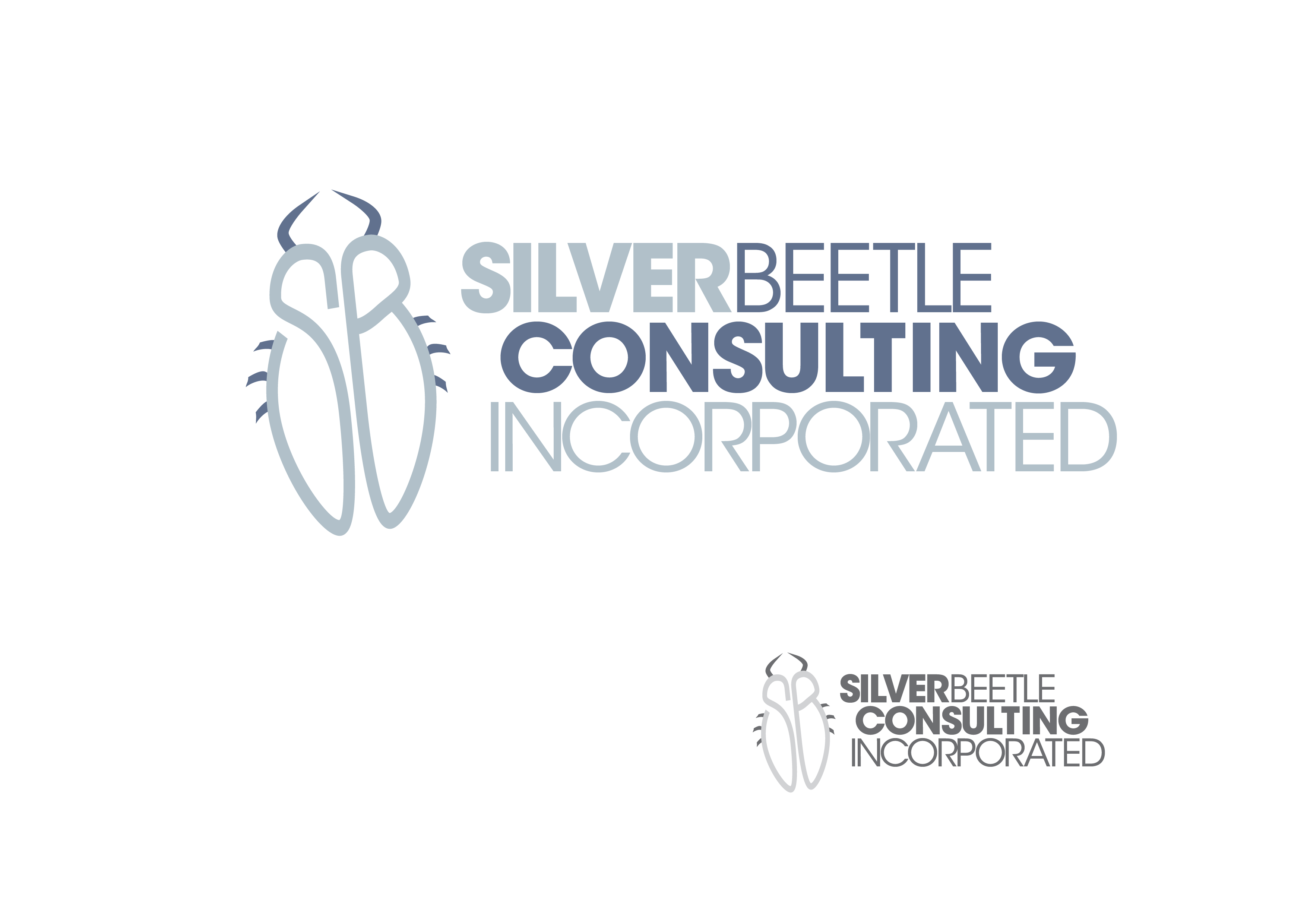 Logo Design by Private User - Entry No. 119 in the Logo Design Contest Silver Beetle Consulting Inc. Logo Design.