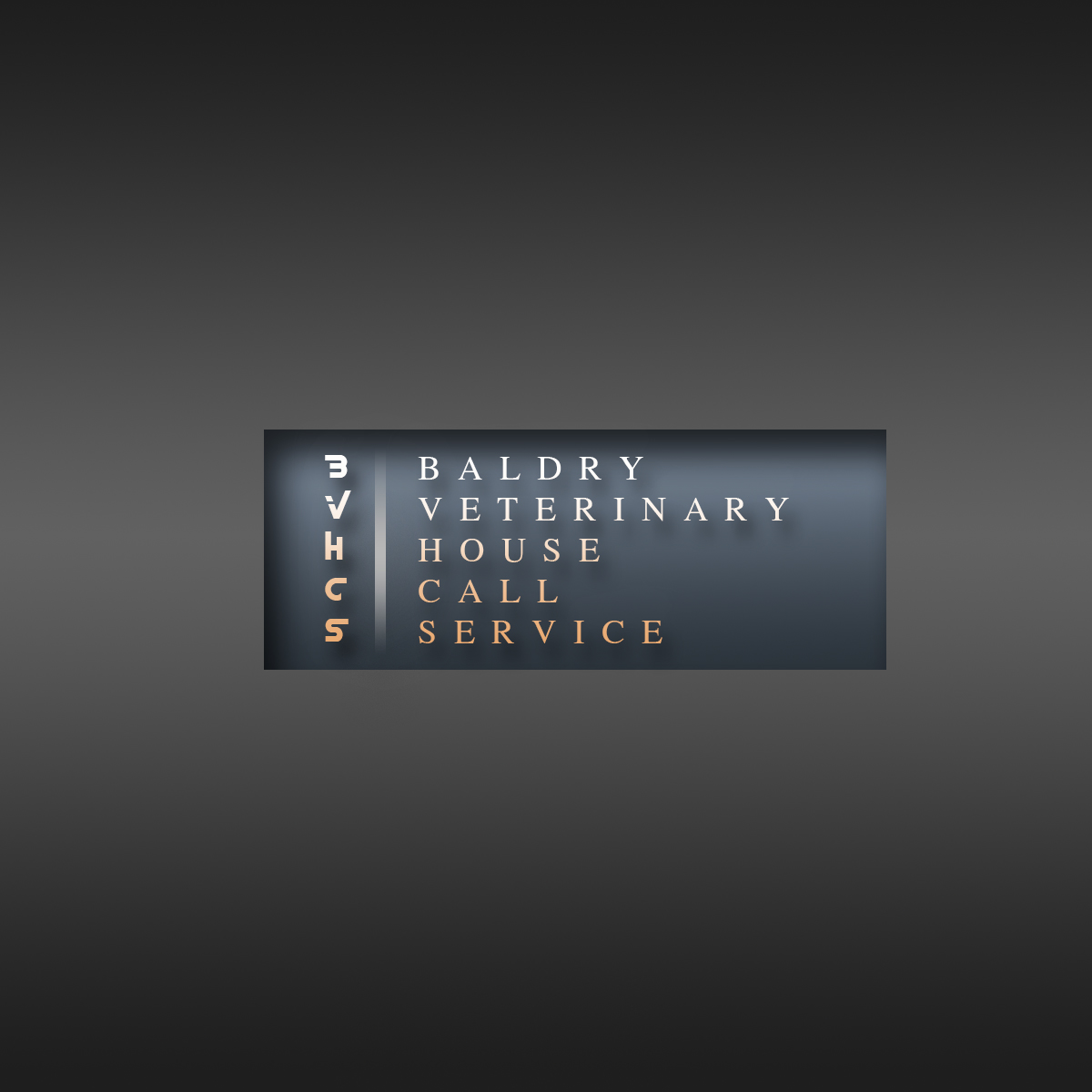 Logo Design by Viral Ramani - Entry No. 2 in the Logo Design Contest Captivating Logo Design for Baldry Veterinary House Call Service.