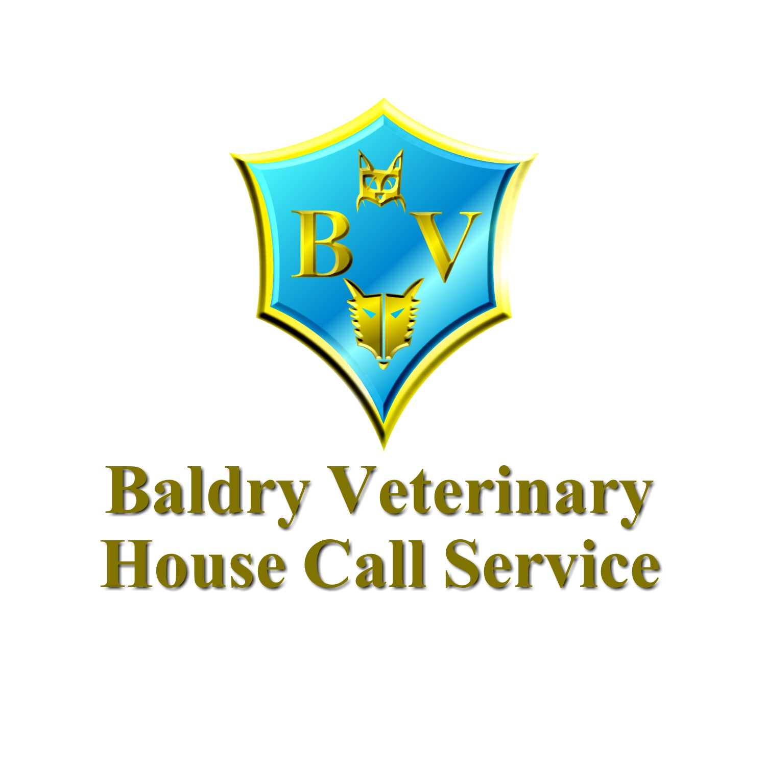 Logo Design by Ismail Adhi Wibowo - Entry No. 6 in the Logo Design Contest Captivating Logo Design for Baldry Veterinary House Call Service.