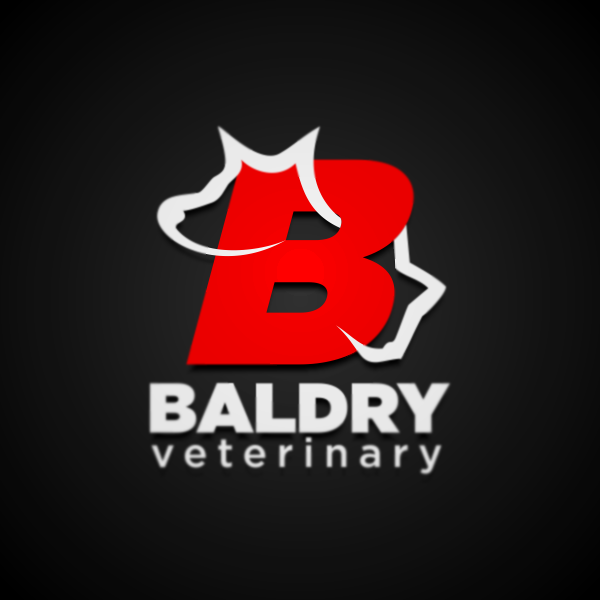 Logo Design by Private User - Entry No. 15 in the Logo Design Contest Captivating Logo Design for Baldry Veterinary House Call Service.