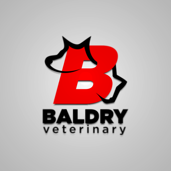Logo Design by Private User - Entry No. 16 in the Logo Design Contest Captivating Logo Design for Baldry Veterinary House Call Service.