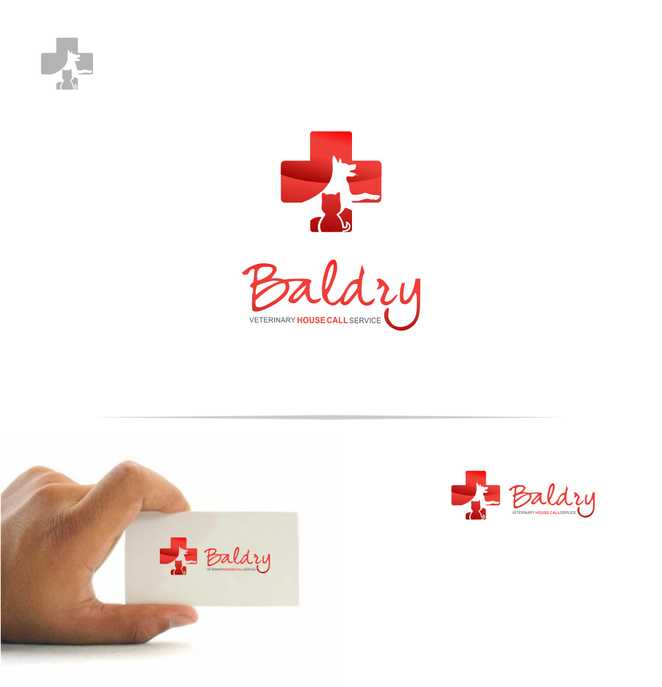 Logo Design by Mitchnick Sunardi - Entry No. 18 in the Logo Design Contest Captivating Logo Design for Baldry Veterinary House Call Service.