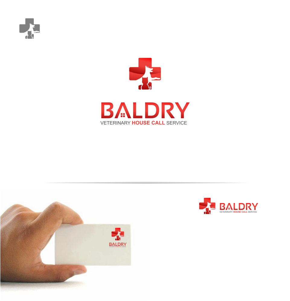 Logo Design by Mitchnick Sunardi - Entry No. 20 in the Logo Design Contest Captivating Logo Design for Baldry Veterinary House Call Service.