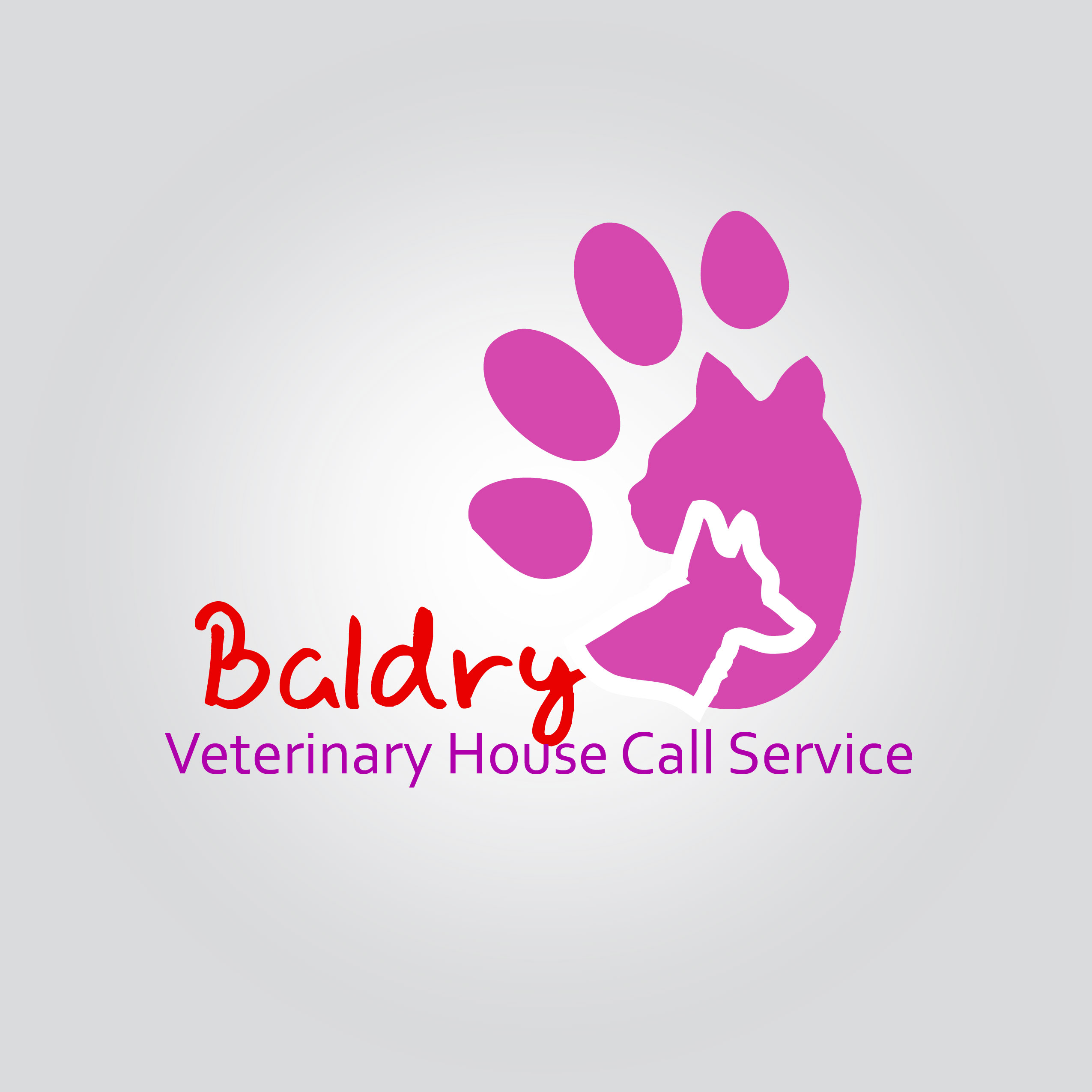Logo Design by Private User - Entry No. 41 in the Logo Design Contest Captivating Logo Design for Baldry Veterinary House Call Service.