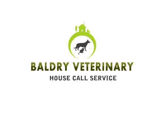 Logo Design by Tathastu Sharma - Entry No. 58 in the Logo Design Contest Captivating Logo Design for Baldry Veterinary House Call Service.