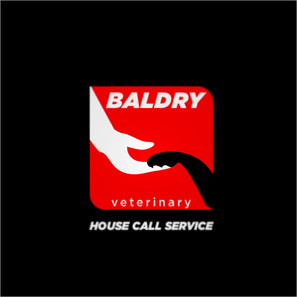 Logo Design by Private User - Entry No. 65 in the Logo Design Contest Captivating Logo Design for Baldry Veterinary House Call Service.