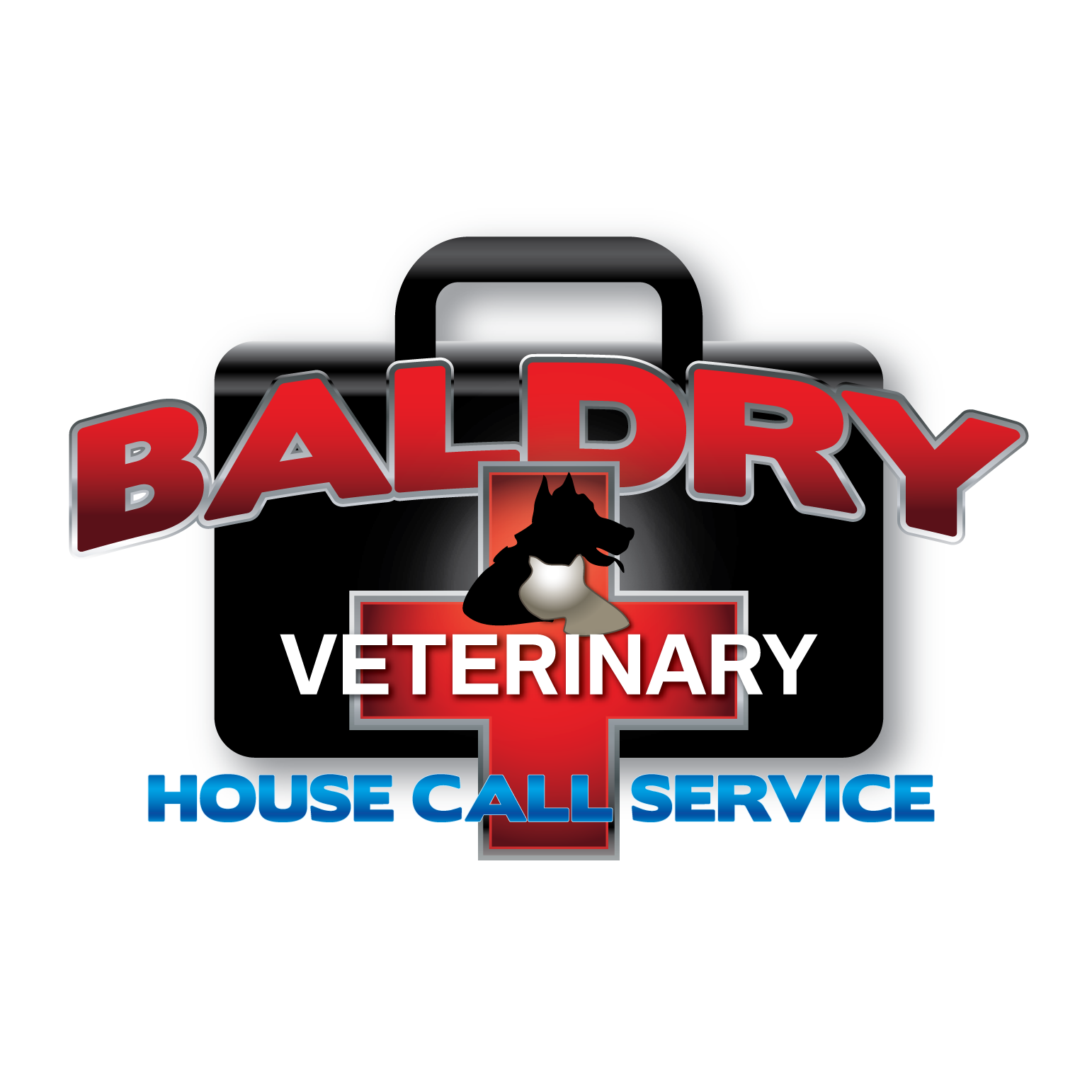 Logo Design by Teresa Abney - Entry No. 69 in the Logo Design Contest Captivating Logo Design for Baldry Veterinary House Call Service.