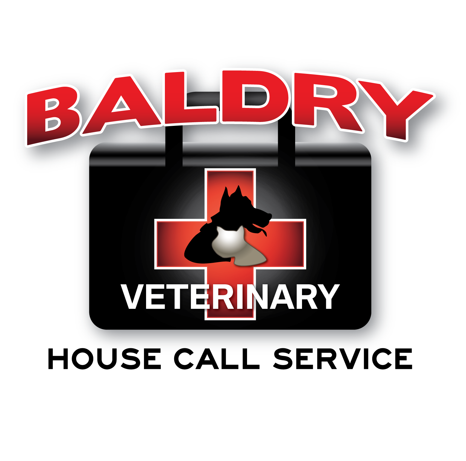 Logo Design by Teresa Abney - Entry No. 76 in the Logo Design Contest Captivating Logo Design for Baldry Veterinary House Call Service.
