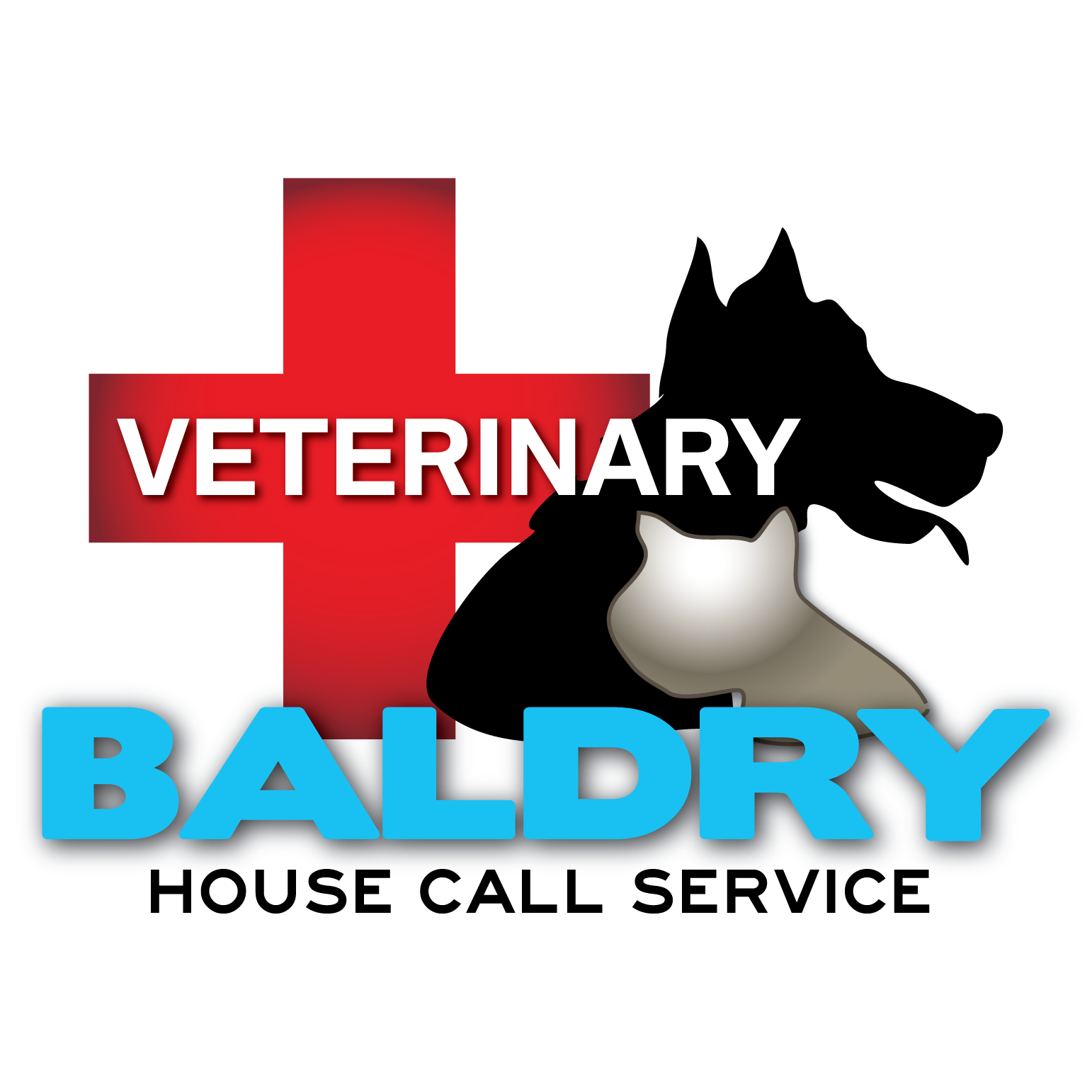 Logo Design by Teresa Abney - Entry No. 77 in the Logo Design Contest Captivating Logo Design for Baldry Veterinary House Call Service.