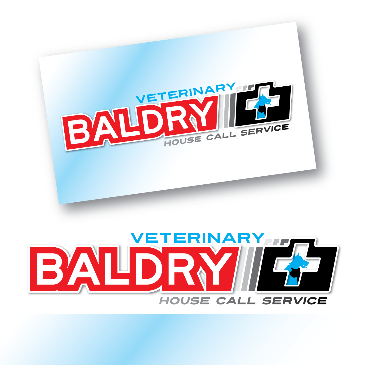 Logo Design by Teresa Abney - Entry No. 96 in the Logo Design Contest Captivating Logo Design for Baldry Veterinary House Call Service.