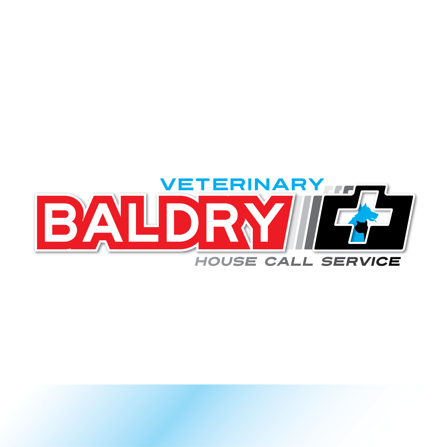 Logo Design by Teresa Abney - Entry No. 97 in the Logo Design Contest Captivating Logo Design for Baldry Veterinary House Call Service.