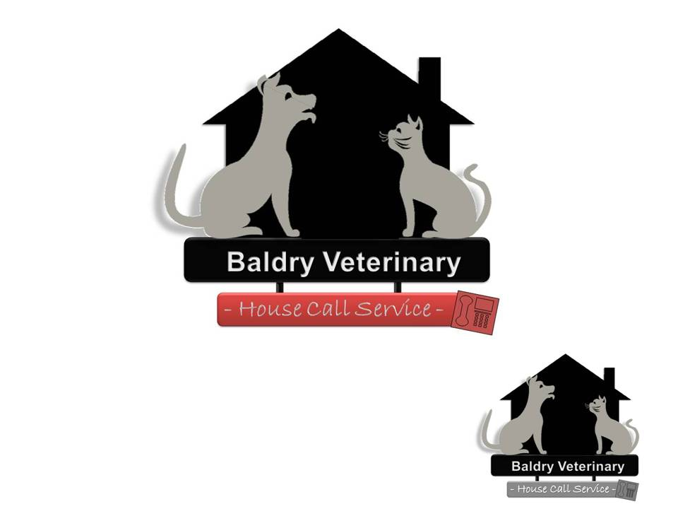 Logo Design by Private User - Entry No. 124 in the Logo Design Contest Captivating Logo Design for Baldry Veterinary House Call Service.
