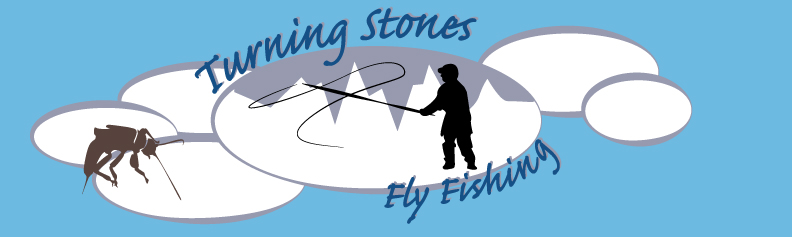Logo Design by Sarah Hoeppner - Entry No. 6 in the Logo Design Contest New Logo Design for Turning Stones Fly Fishing.