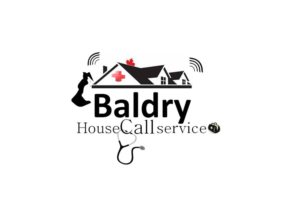 Logo Design by Private User - Entry No. 160 in the Logo Design Contest Captivating Logo Design for Baldry Veterinary House Call Service.