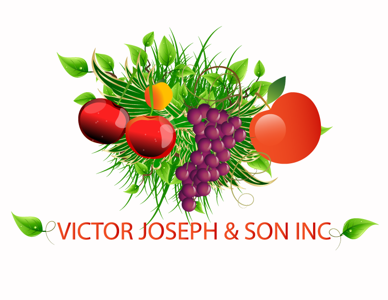 Logo Design by Nadia Khan - Entry No. 92 in the Logo Design Contest Imaginative Logo Design for Victor Joseph & Son, Inc..