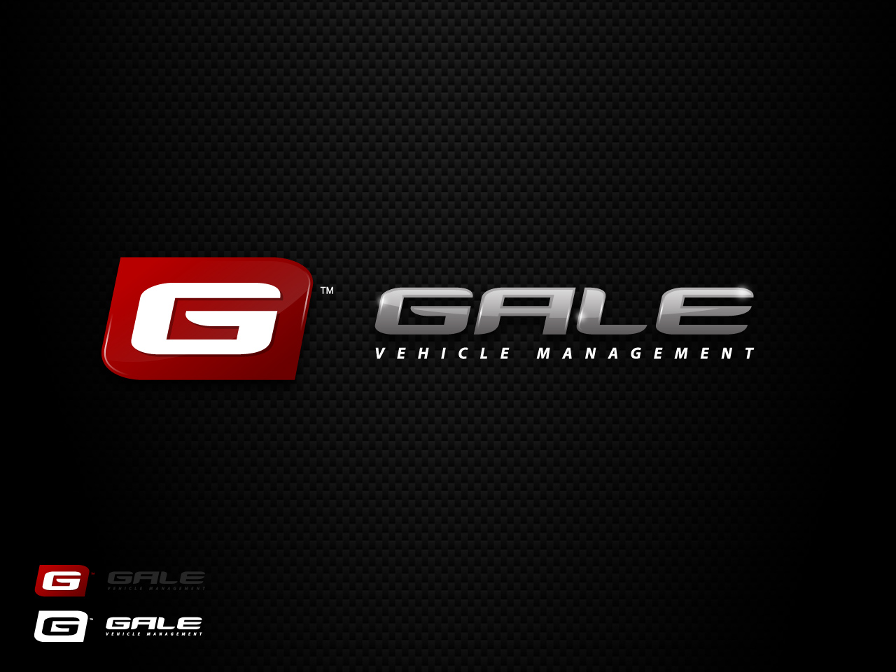 Logo Design by jpbituin - Entry No. 144 in the Logo Design Contest Artistic Logo Design for Gale Vehicle Management.