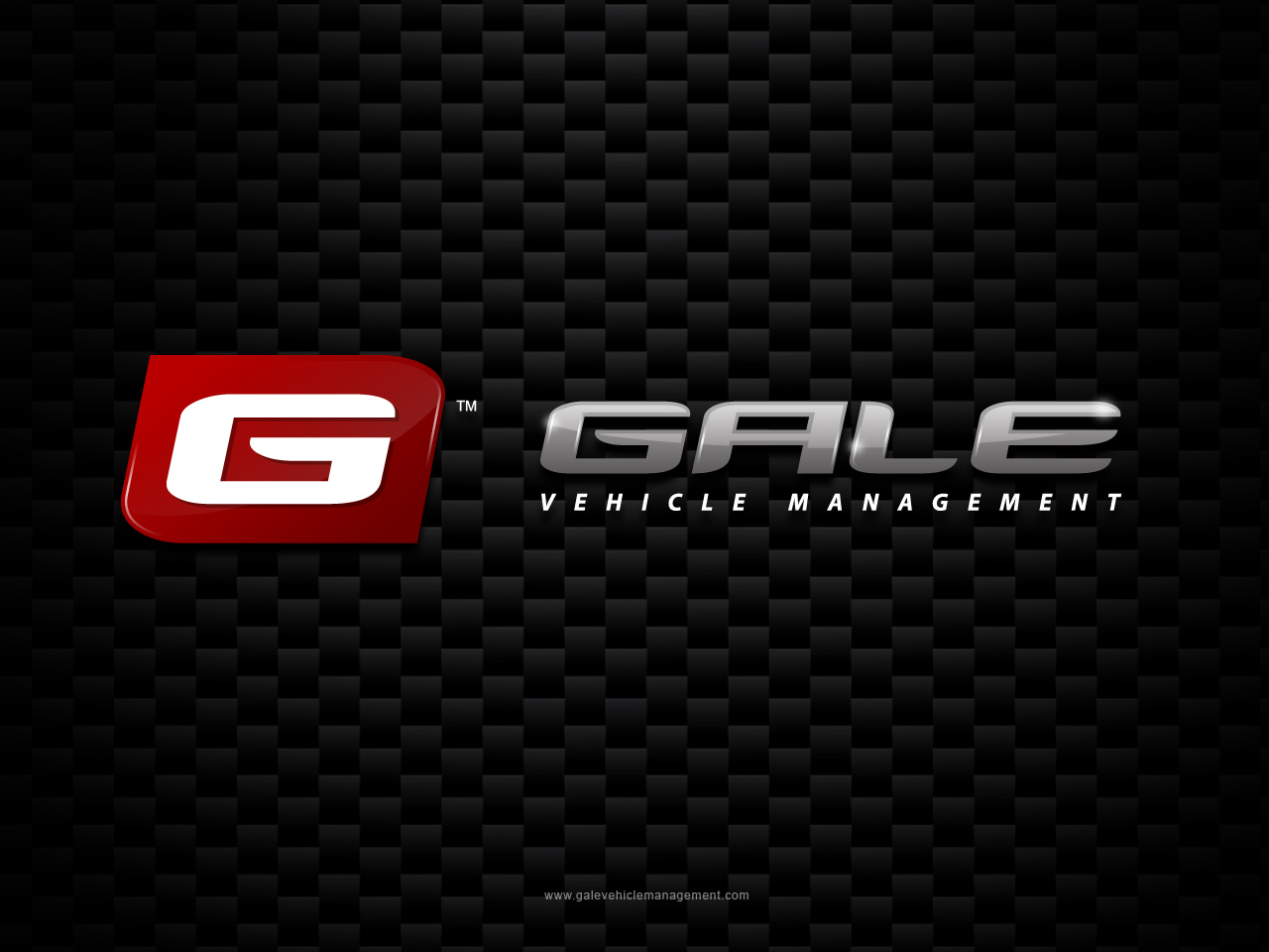 Logo Design by jpbituin - Entry No. 145 in the Logo Design Contest Artistic Logo Design for Gale Vehicle Management.