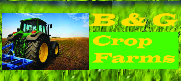 Logo Design by Vahini Chittella - Entry No. 49 in the Logo Design Contest Artistic Logo Design for B & G Crop Farms.