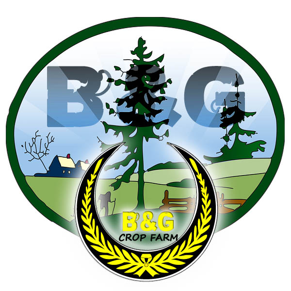 Logo Design by Muhammad Akmal Syafiq - Entry No. 51 in the Logo Design Contest Artistic Logo Design for B & G Crop Farms.
