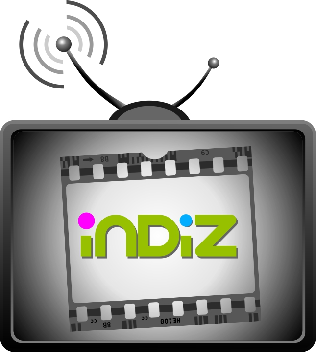 Logo Design by Private User - Entry No. 207 in the Logo Design Contest Fun Logo Design for Indiz.