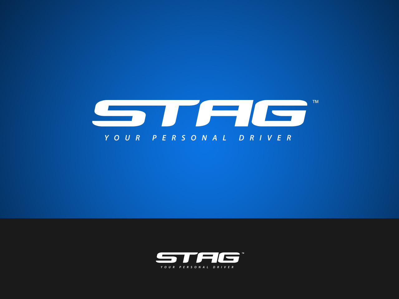 Logo Design by jpbituin - Entry No. 40 in the Logo Design Contest Unique Logo Design Wanted for Stag.