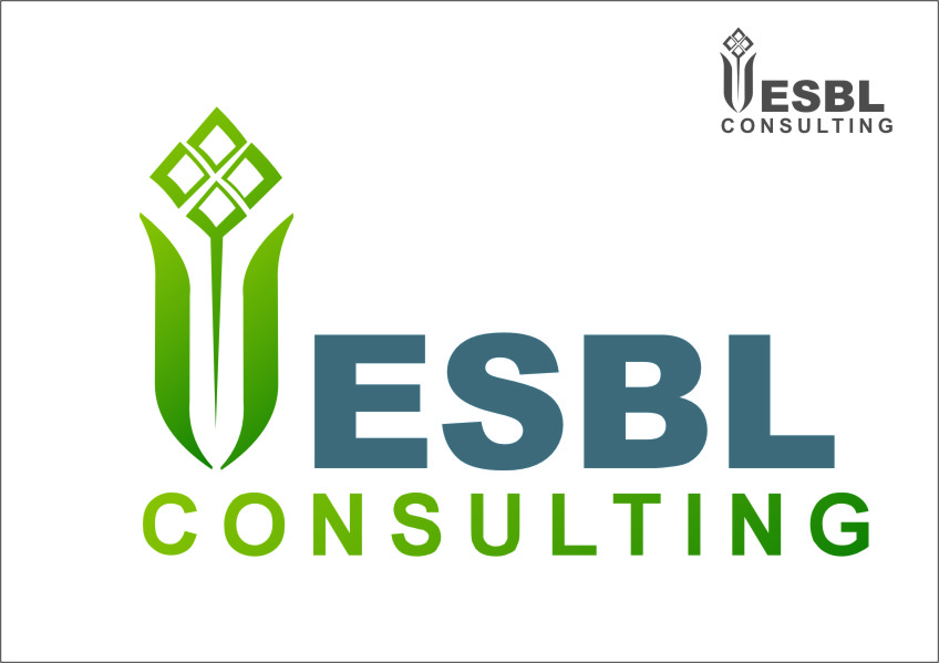 Logo Design by RasYa Muhammad Athaya - Entry No. 33 in the Logo Design Contest EBSL Consulting Logo Design.