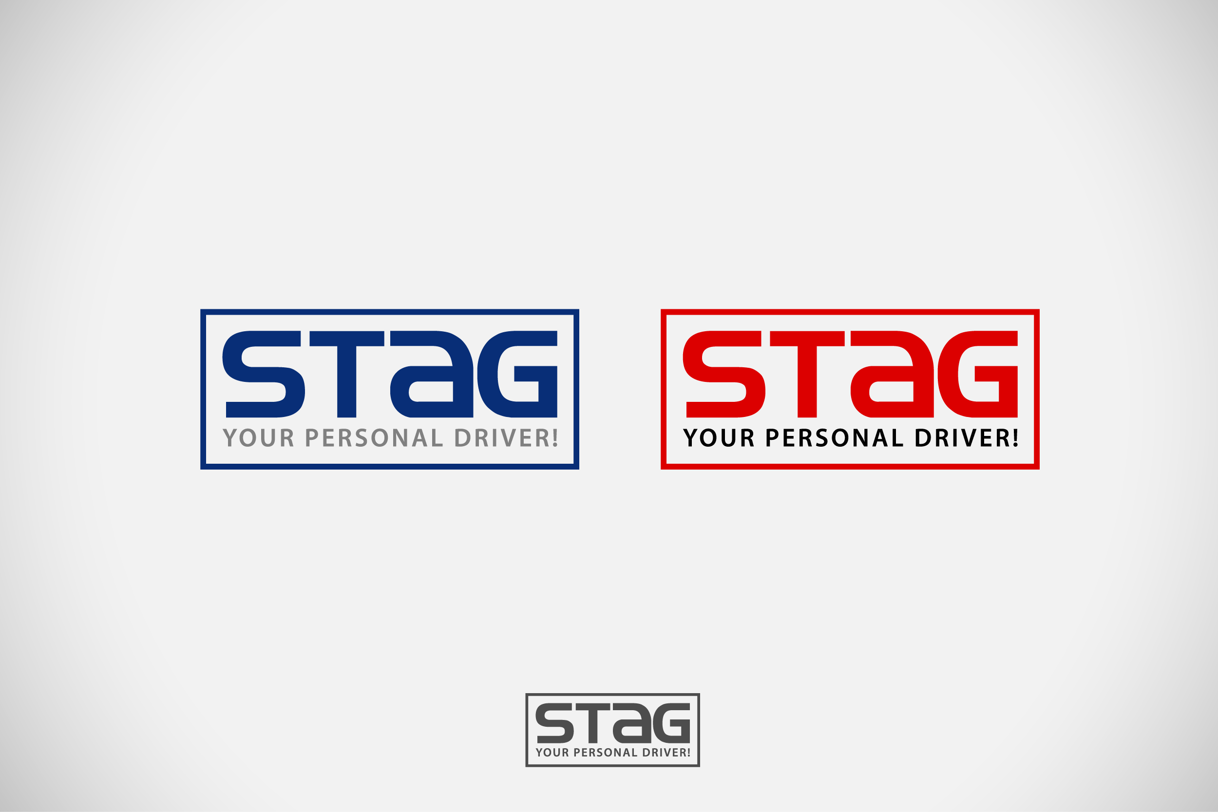 Logo Design by Private User - Entry No. 220 in the Logo Design Contest Unique Logo Design Wanted for Stag.
