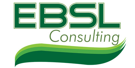 Logo Design by Mohamed Sheikh - Entry No. 45 in the Logo Design Contest EBSL Consulting Logo Design.