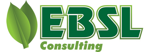 Logo Design by Mohamed Sheikh - Entry No. 50 in the Logo Design Contest EBSL Consulting Logo Design.
